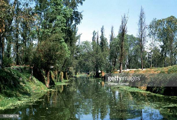 Xochimilco Gardens Stock Photos And Pictures Getty Images