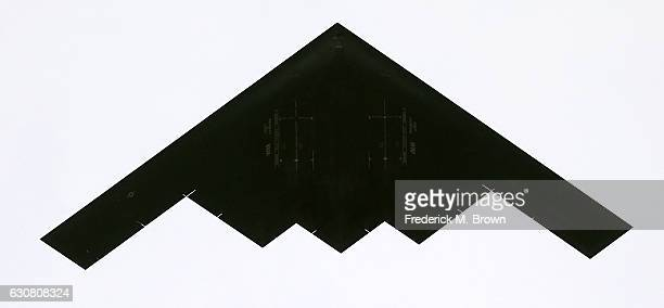 The B2 Stealth Bomber flies over the 2017 Tournament of Roses Parade on January 2 2017 in Pasadena California