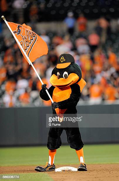The Baltimore Orioles mascot celebrates after a victory against the Texas Rangers at Oriole Park at Camden Yards on August 2 2016 in Baltimore...
