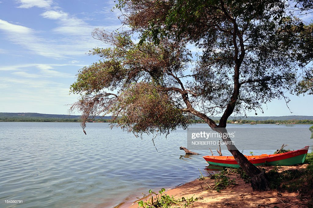The banks of the Ypacarai Lake, declared not suitable for bathing, in Ypacarai, Paraguay on October 18, 2012. Paraguay's Health Minister Antonio Corbo said that water samples from the lake analized in Sao Paulo, Brazil with the backing of the Pan American Health Organization determined that the bacteria found in the lake's waterweed present a high level of neurologic and liver toxicity. AFP PHOTO / NORBERTO DUARTE