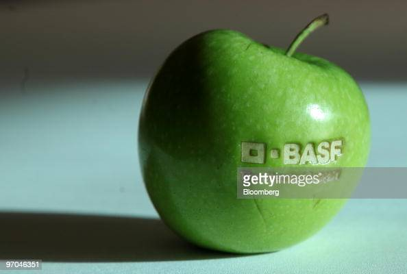 The BASF logo is seen on an apple in Ludwigshafen Germany on Thursday Feb 25 2010 BASF SE the world's biggest chemical company made a...