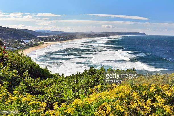 Mesmerizing The Garden Route Stock Photos And Pictures  Getty Images With Exquisite The Beach At Wilderness Garden Route With Nice Garden Of Words Also Crocus Garden Design In Addition The Secret Beauty Garden Edinburgh And Garden Centres Plymouth Area As Well As Kew Royal Botanic Gardens Candles Additionally Winter Garden Orange County From Gettyimagescom With   Exquisite The Garden Route Stock Photos And Pictures  Getty Images With Nice The Beach At Wilderness Garden Route And Mesmerizing Garden Of Words Also Crocus Garden Design In Addition The Secret Beauty Garden Edinburgh From Gettyimagescom