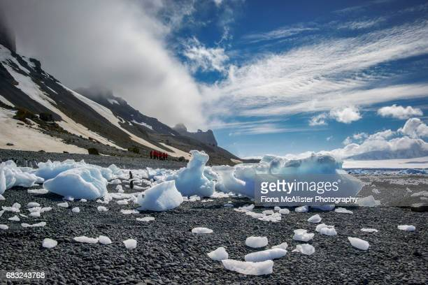 The Beach Beneath Brown Bluff, Ancient Antarctic Volcano