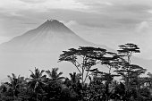 The Beating Heart of Java