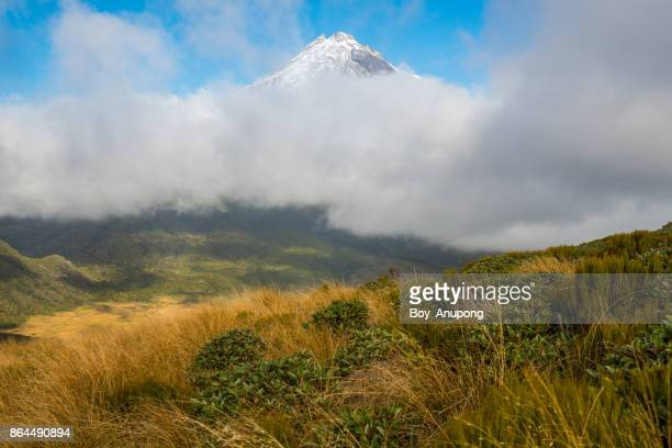 The beautiful landscape of Mt.Taranaki above the clouds in North Island of New Zealand.