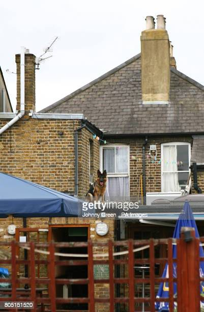 The beer garden of The New Inn public House on Myrtle Road in Sutton south London where a 28yearold man was fatally wounded yesterday evening
