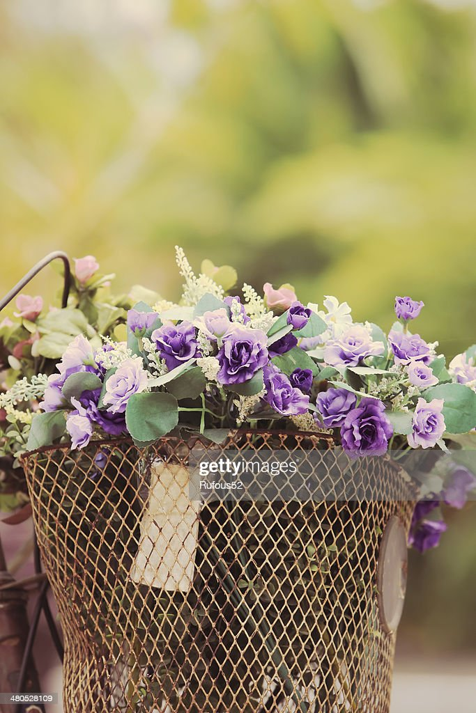 The bike basket with roses : Stock Photo