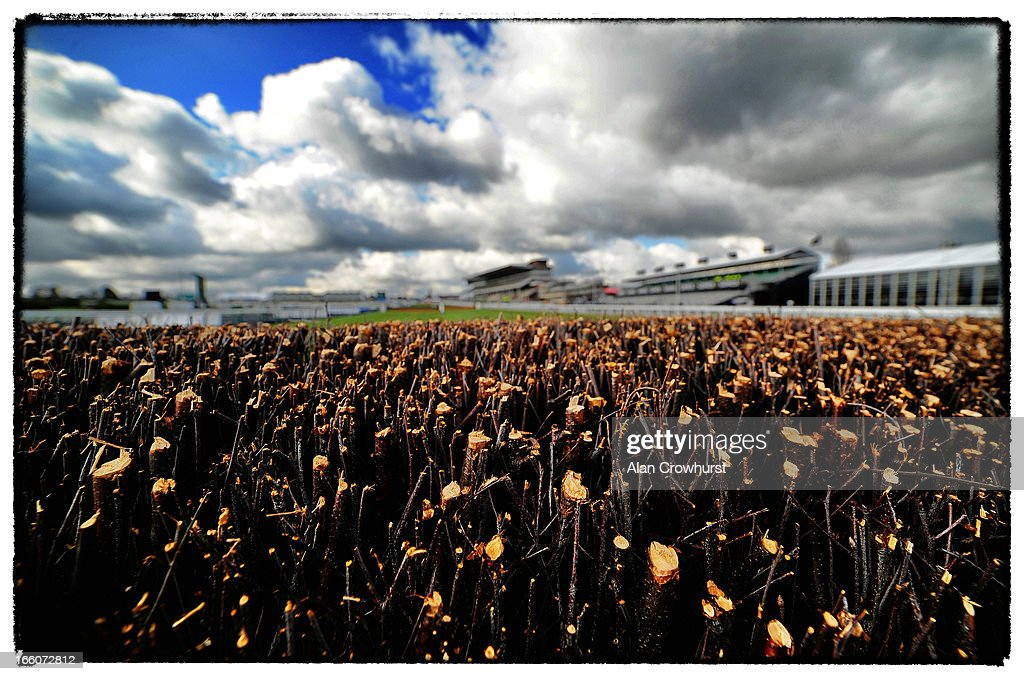 The birch on top of a chase fence by the grandstands during Ladies Day at Cheltenham racecourse on March 13, 2013 in Cheltenham, England.