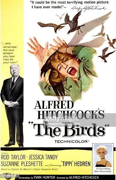 the depiction of the novel psycho in the movie the birds In its day, the early 1960s, the birds was considered controversial and shocking even in the late 60s into the early 70s when i had first seen the birds on tv, it was still pretty shocking though in comparison to the movies being filmed in our current age, the birds, with the exception of a few scenes, is considered to be quite tame.
