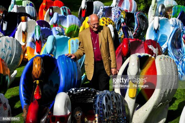 The Bishop of Bath and Wells Peter Price checks out the giant flock of around 60 brightly coloured swan sculptures in the grounds of the Bishops...