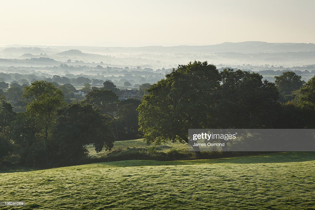 The Blackdown Hills : Stock Photo