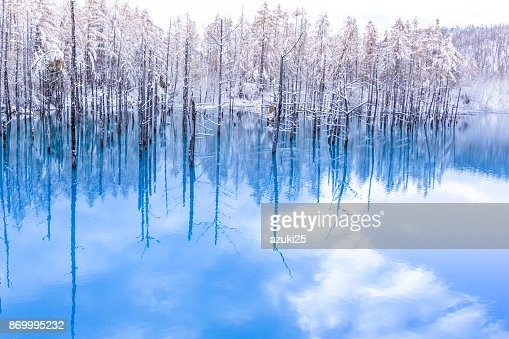The blue pond in winter : Stock Photo