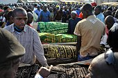 The bodies of five of the victims of last week's attack are taken for burial during their funeral in Bamako on November 25 2015 Gunmen went on a...