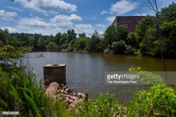The body of 17yearold Nabra Hassanen of Reston VA was found in this pond between an office park on the 21500 block of Ridgetop Circle and an...