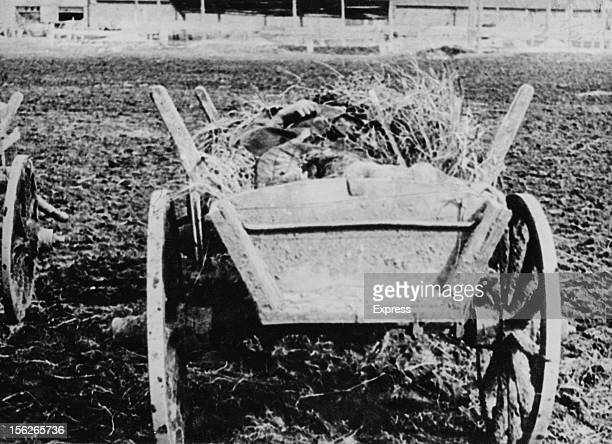 The body of a victim of the the manmade Holodomor famine lying in a hay cart in the Ukraine former Soviet Union 1934