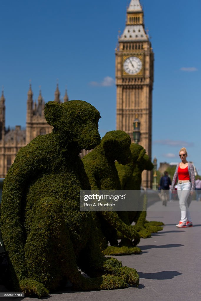 The Body Shop transforms Westminster Bridge installing five six-foot monkeys to mark the launch of The Body Shop's new Bio-Bridges programme, which aims to regenerate 75 million square metres of forest and protect it from exploitation, poaching and unsustainable harvesting, at Westminster Bridge on May 24, 2016 in London, England. The monkeys represent a rare and endangered species, the Red Shanked Douc, which is found in the Khe Nuoc Trong forest in North Central Vietnam, where The Body Shop's first Bio-Bridges project will be located.