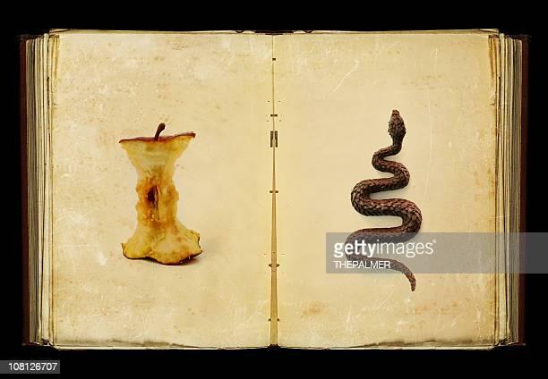 Il libro di peccati