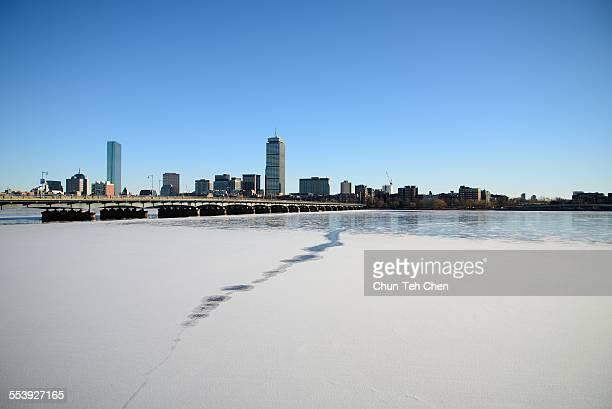 The Boston skyline