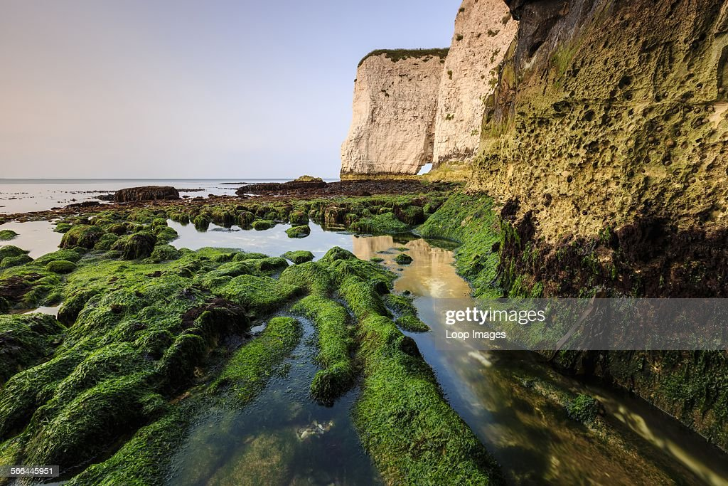 The bottom of the cliffs at Handfast Point on a very low tide