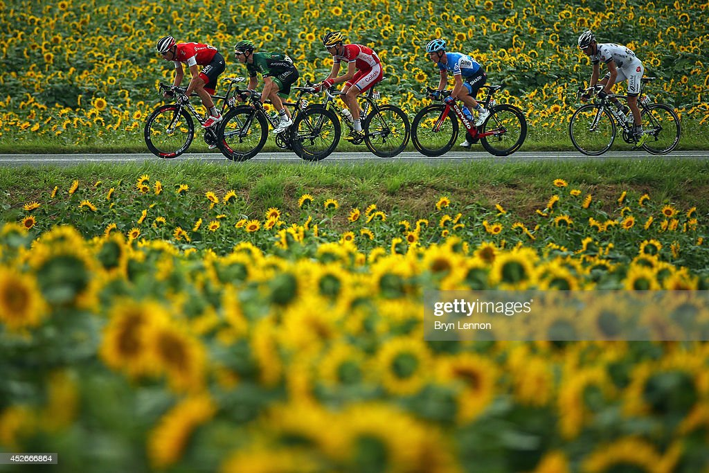 The breakaway in action during the nineteenth stage of the 2014 Tour de France, a 208km stage between Maubourguet Pays du Val d'Adour and Bergerac, on July 25, 2014 in Bergerac, France.