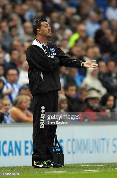 The Brighton Hove Albion Manager Oscar Garcia during the pre season friendly match between Brighton Hove Albion and Villareal at Amex Stadium on July...