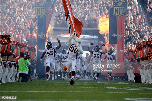 The Broncos take the field before the game The Denver Broncos played the Carolina Panthers in Super Bowl 50 at Levi's Stadium in Santa Clara Calif on...