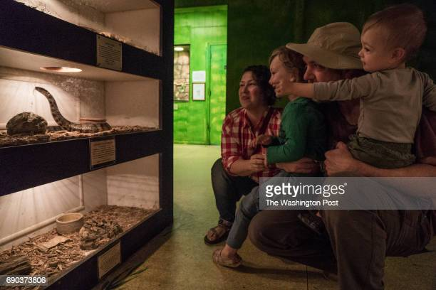 The Bukowski family from left to right Hannah Quinn Matt and Huck visit the snake room at the Luray Zoo in Luray VA The family visits from...