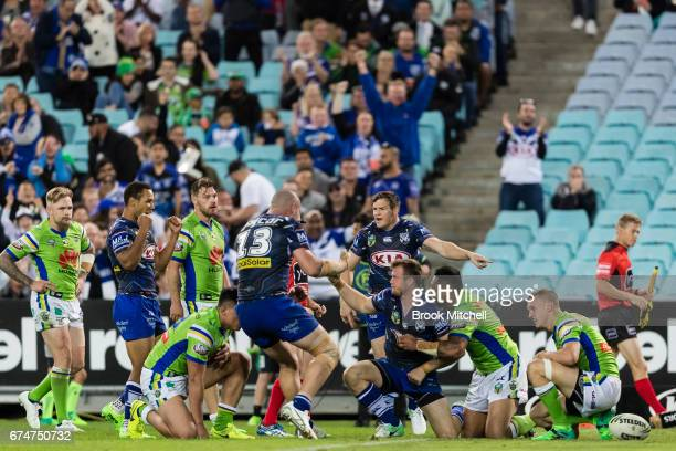 The Bulldogs celebrate a try by Josh Morris during the round nine NRL match between the Canterbury Bulldogs and the Canberra Raiders at ANZ Stadium...