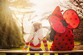 The butterfly tells the ladybird
