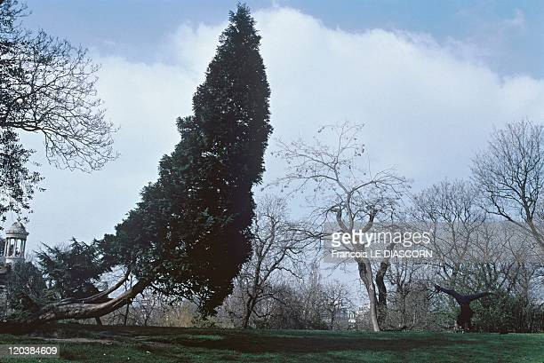 The ButtesChaumont park in Paris France The ButtesChaumont Park in the 19th district of Paris a curving tree