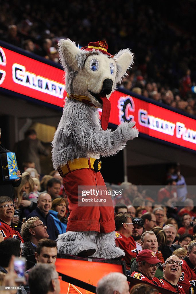 The Calgary Flames' mascot Harvey the Hound rallies the crowd during an NHL game against the Phoenix Coyotes at Scotiabank Saddledome on April 12...