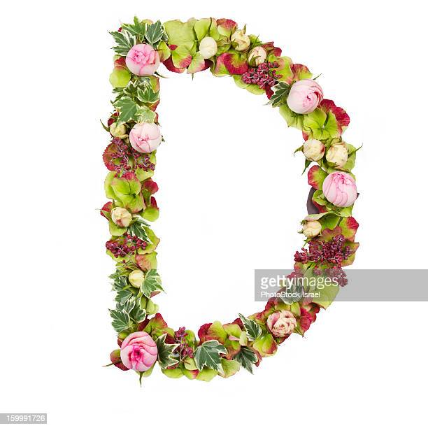 The capital letter D