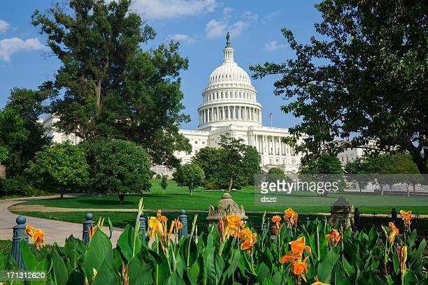 The Capitol Building, Washington DC