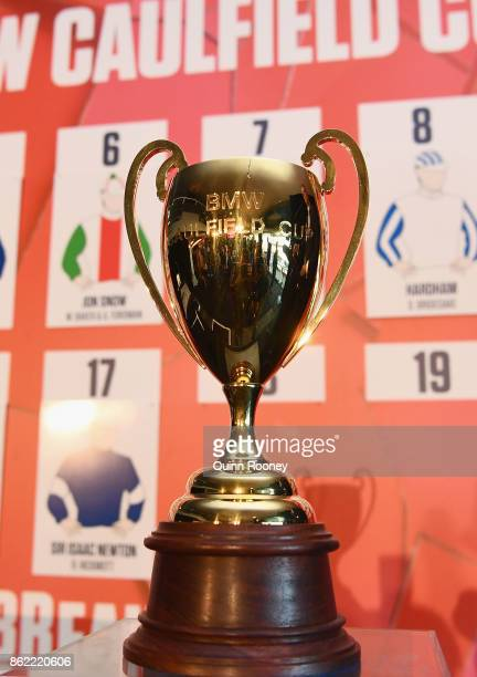 The Caulfield Cup is on display during the Caulfield Cup Barrier Draw at Caulfield Racecourse on October 17 2017 in Melbourne Australia