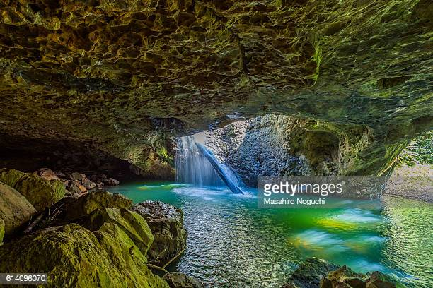The cave of Natural Bridge, Springbrook National Park, Australia