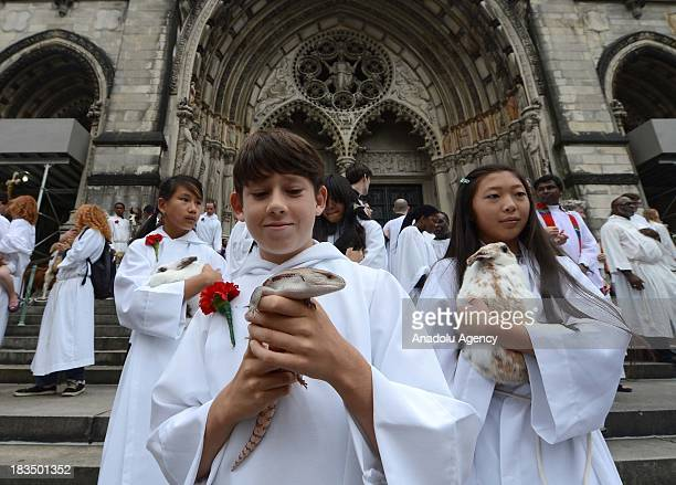 The celebration of animal blessing draw humans alike during the 29th Annual Blessing of the Animals at 121 years old St John Cathedral the Devine on...
