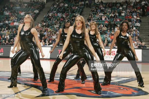 The Charlotte Bobcats Dance Team performs during the game against the Washington Wizards on March 5 2005 at the Charlotte Coliseum in Charlotte North...