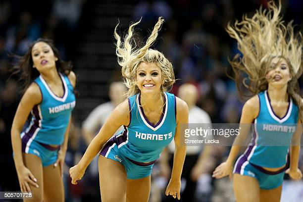 The Charlotte Hornets Honey Bees dancers in action during their game at Time Warner Cable Arena on January 16 2016 in Charlotte North Carolina NOTE...