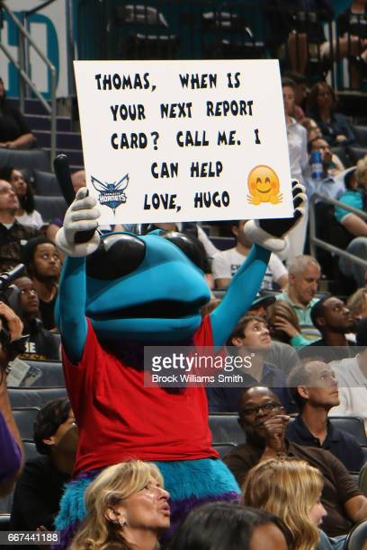 The Charlotte Hornets mascot holds up a sign during the game against the Milwaukee Bucks on March 28 2017 at the Spectrum Center in Charlotte North...