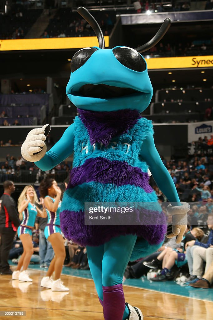 The Charlotte Hornets mascot performs during the game against the Milwaukee Bucks on January 16, 2016 at Time Warner Cable Arena in Charlotte, North Carolina.