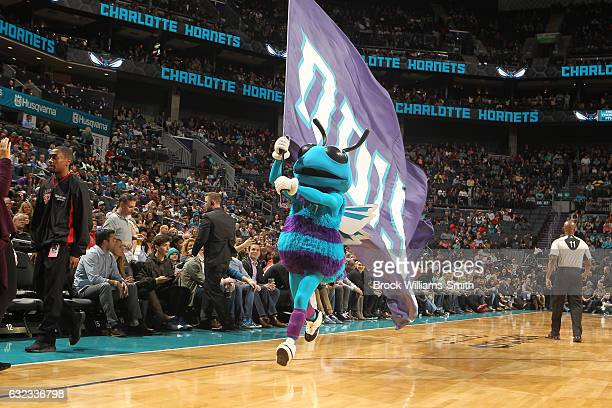 The Charlotte Hornets mascot performs during the game against the Brooklyn Nets on January 21 2017 at Spectrum Center in Charlotte North Carolina...