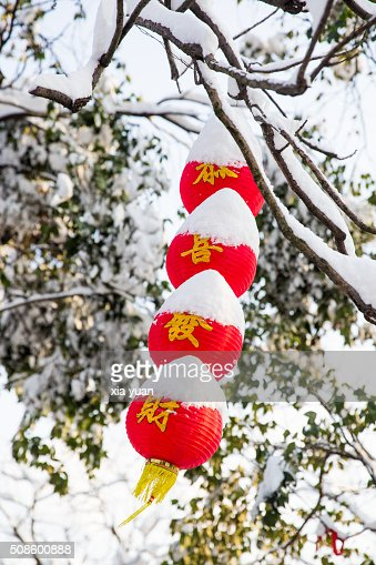 The chinese lanterns in snow : Stock Photo