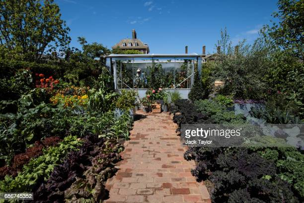 The 'Chris Evans Taste Garden' on display at the Chelsea Flower Show on May 22 2017 in London England The prestigious Chelsea Flower Show held...