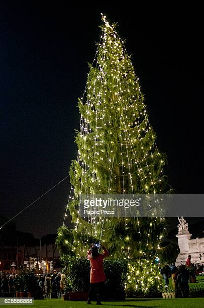 The Christmas tree in Piazza Venezia and Via del Corso after the Mayor of Rome lighted it on