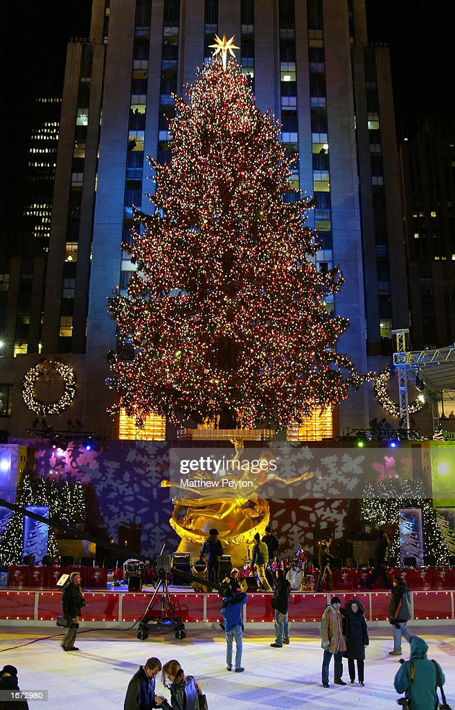 the christmas tree is photographed after lighting at the 70th annual rockefeller center christmas tree lighting - New York Christmas Tree Lighting