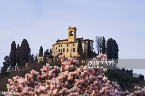 The church of Montevecchia with pink flowers in the foreground. Montevecchia, Brianza, Lecco, Lombardy