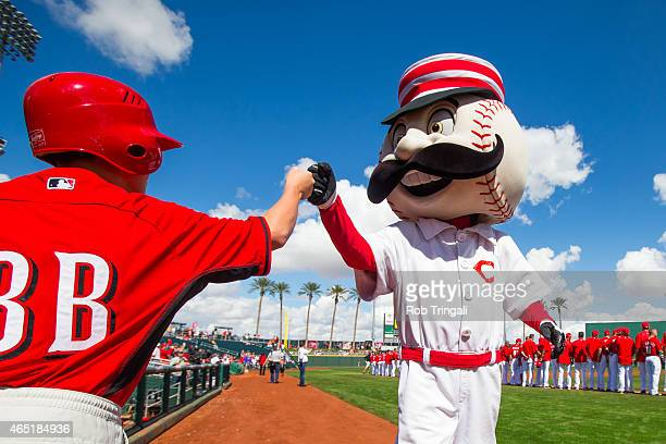 The Cincinnati Reds mascot fist bumps the balboy before a spring training game between the Cincinnati Reds and the Cleveland Indians at Goodyear...