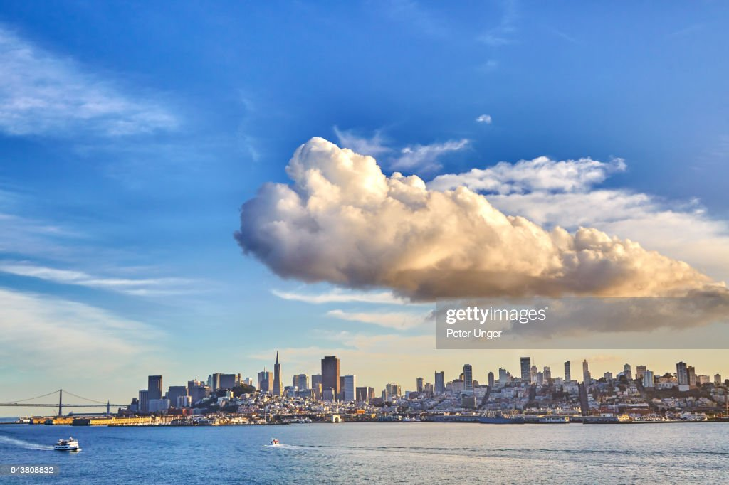The city of San Francisco,California.USA : Stock Photo