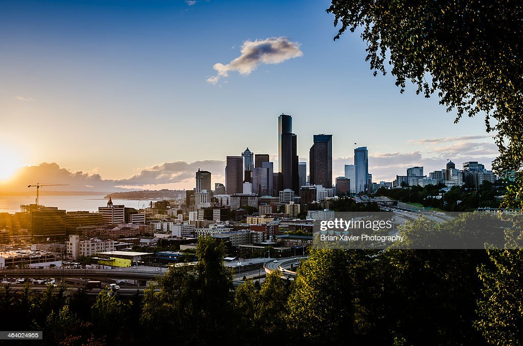 The city of Seattle framed by green trees