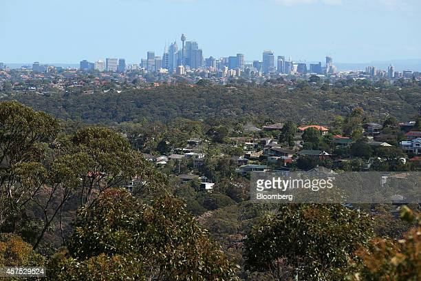 The city skyline stands in the background as residential buildings sit among trees in the Northern Beaches area of Sydney Australia on Saturday Oct...